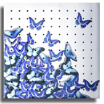 Душевая головка Bongio Tattoo, цвет: fly q - blue