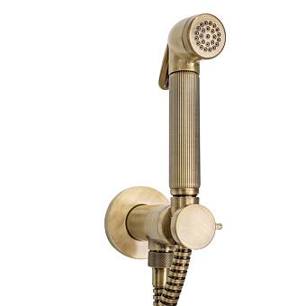 Bossini Nikita Гигиенический душ с прогрессивным смесителем, лейка металлическая, шланг металлический, цвет: бронза
