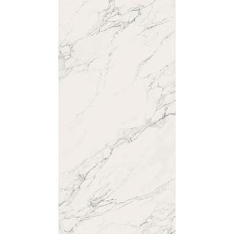 AVA Statuario Керамогранит 320x160см, универсальная, лаппатированный ректифицированный, цвет: Slab B