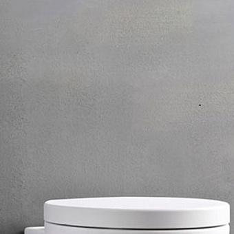 Cielo Le Giare Сиденье для унитаза, цвет: глянцевый белый
