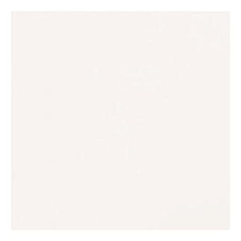 Casalgrande Padana Unicolore Керамогранитная плитка, 60x60см., универсальная, цвет: bianco assoluto