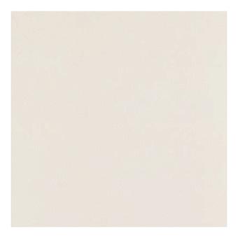 Casalgrande Padana Unicolore Керамогранитная плитка, 40x40см., универсальная, цвет: bianco b levigato