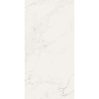 AVA Marmi Statuario Керамогранит 240x120см, универсальная, натуральный ректифицированный, цвет: Statuario