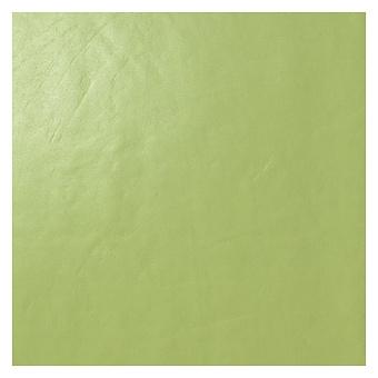 Casalgrande Padana Architecture Керамогранит 60x60см., универсальная, цвет: acid green gloss