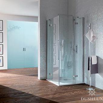 SAMO Zenit Душевая дверь 1/2 угла 96,5-99x200см, прозрачное стекло, петли слева, хром