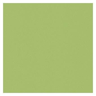 Casalgrande Padana Architecture Керамогранит 60x60см., универсальная, цвет: acid green levigato