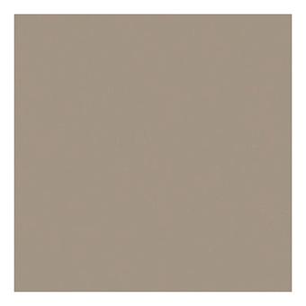 Casalgrande Padana Unicolore Керамогранитная плитка, 30x30см., универсальная, цвет: grigio perla levigato