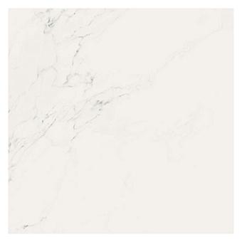 AVA Marmi Statuario Керамогранит 60x60см, универсальная, натуральный ректифицированный, цвет: Statuario