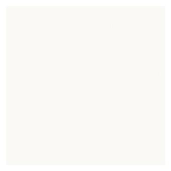 AVA Absolute Керамогранит 60х60см, универсальная, натуральный ректифицированный, цвет: absolute white